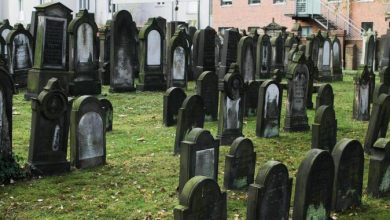 Photo of Židovský hřbitov Jüdischer Friedhof