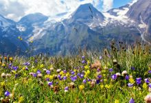Photo of Letní turistické karty – Horní Rakousko