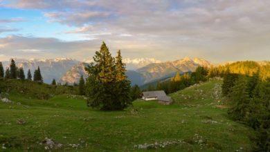 Photo of Národní park Weissbach